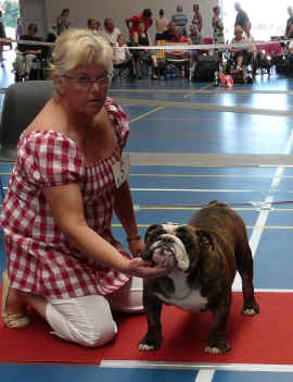 danish club show 27.7.08 BEST PUPPY (MALE).jpg (779393 bytes)